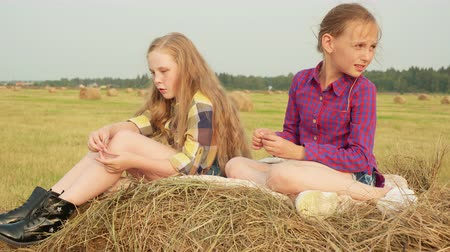 palheiro : Serious girls on haystack in field. Adorable preteen girls in checkered shirts sitting on haystack in field during harvest.
