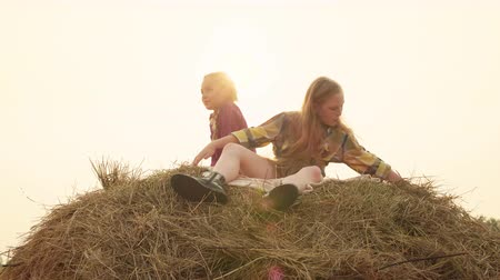 lelkesedés : Two Teenager Girls Sitting on Haystack Sunny Day. Caucasian Blond Young Ladys Relaxing on Dry Hay at Harvesting. Kids on Stack of Yellow Straw. Joyful Beauty Spend Time on Field Summer Time