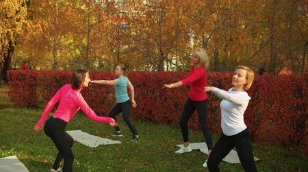 trener : Fitness woman training yoga exercise in autumn park. Group yoga woman training asana in city park. Sport women waving hands at yoga class outdoor Wideo