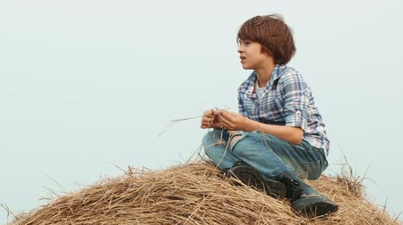 apilar : Young cowboy in jeans and checkered shirt sitting on haystack on countryside field. Young handsome boy on top haystack on harvesting field in village Archivo de Video