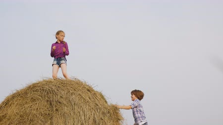 bales : Carefree teenagers playing on haystack on countryside field in village. Happy girl dancing on top haystack at harvesting field. Teenagers having fun on farming field