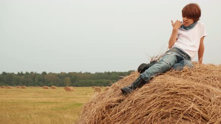 hooiberg : Teenager boy sitting on top haystack on harvesting field in countryside. Young handsome boy resting on haystack on agricultural field in village