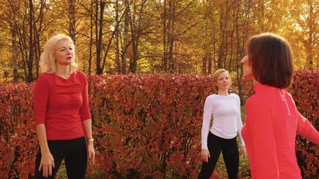 concentrato : Sportive middle aged women exercising together in park. Flexible women in sportswear training together and dancing in beautiful autumn park