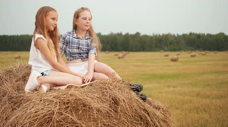 hooiberg : Beautiful teenager girls sitting on hay stack at harvesting field in village. Young girls posing on countryside haymow at agricultural field Stockvideo