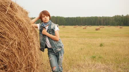 boyhood : Pensive teenage boy leaning at haystack in field. Cute stylish thoughtful teenage boy resting near hay and looking away in autumn field Stock Footage