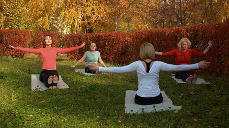 jimnastik : Fitness group practicing yoga on mats in park. Athletic flexible women sitting on mats and exercising together in beautiful autumn park Stok Video