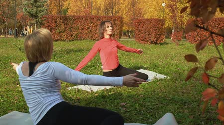 cursus : Sporty women doing fitness exercise in autumn park. Beautiful athletic flexible women in sportswear practicing workout in autumn park Stockvideo