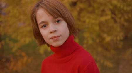 adolescents : Portrait handsome teenager boy on yellow trees background in autumn park. Close up happy young boy posing front camera in yellow autumn park