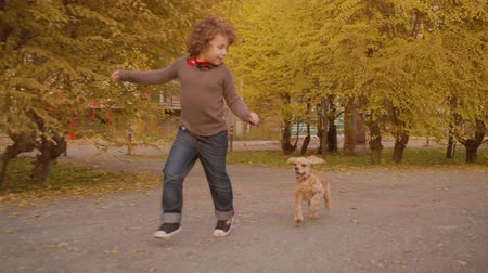 köpek yavrusu : Playful kids running with dog on autumn street. Happy boy and girl running zigzag crankle with cute cocker spaniel on pathway in autumn park Stok Video