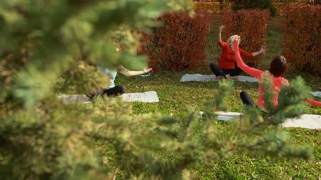 flexibilidade : Sporty women sitting on mats and practicing fitness yoga pilates in park. High angle view of flexible athletic women sitting on yoga mats on green meadow and training together in autumn park
