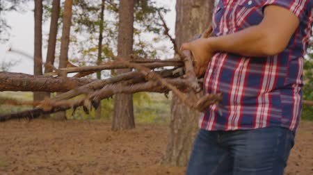 şenlik ateşi : Cropped shot of man carrying dry logs in forest. Close-up partial view of adult man in checkered shirt holding firewood and walking in forest Stok Video
