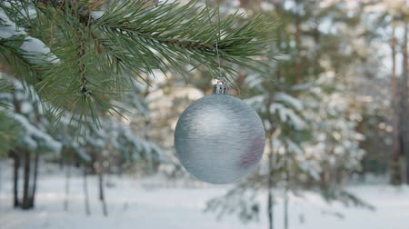 snowy background : Close-up view of rotating shiny christmas ball in winter forest. Cropped shot of woman touching silver xmas bauble hanging on tree branch in winter forest
