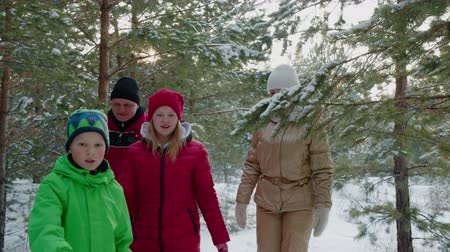 mistério : Friendly family mom, dad, son and daughter walking in coniferous forest at winter holiday. Happy family walking in winter woodland through snowy coniferous trees