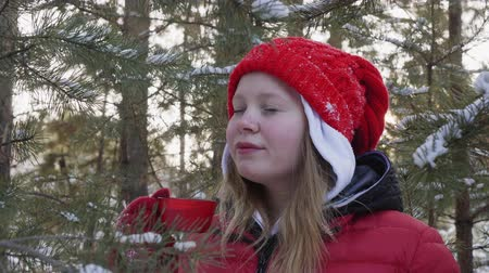 kopje thee : Happy young woman enjoying hot tea in snowy winter forest at holiday walk. Portrait beautiful girl in red hat drinking tea on winter woodland background Stockvideo