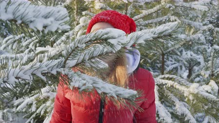 gałązki : Girl sniffing pine tree branch and blowing snow from twigs. Beautiful happy teenage girl standing between snow-covered trees in winter forest