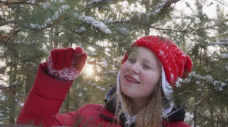 noel ağacı : Playful young woman shaking snowy tree branch in winter forest. Smiling girl teenager playing with pine tree branch in snowy woodland Stok Video