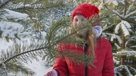 noel ağacı : Happy woman shaking showy tree branches in Christmas forest. Smiling teenager girl playing with pine tree in snowy woodland at winter walk Stok Video