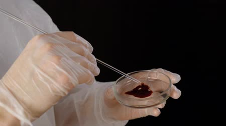 Heart shape blood like health care concept. Cropped shot of scientist smearing blood sample in petri dish. Close up shot of lab worker making heart shaped blood sign in dish Stock Footage