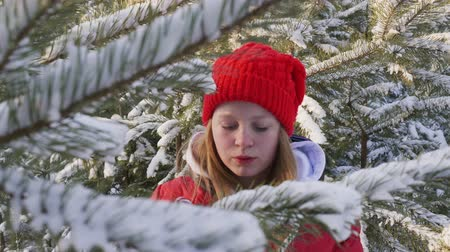 köknar ağacı : Cute happy girl holding candy canes in winter forest. Beautiful cheerful teenage girl standing near snow-covered evergreen trees and holding sweet candies in forest at wintertime
