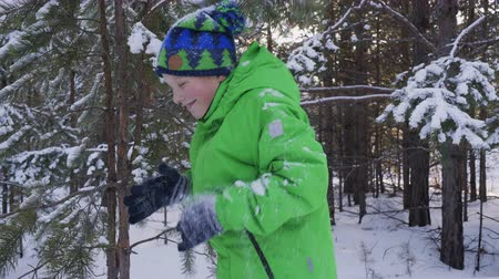 снежинки : Boy playing with pine tree branch in winter forest. Adorable cheerful child standing under falling snow in beautiful winter forest Стоковые видеозаписи