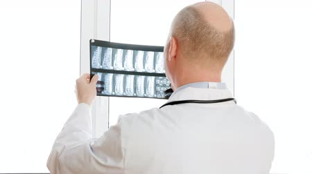 проверка : Back view of doctor holding x-ray against window. Professional medical worker inspecting backbones x-ray. Medicine concept