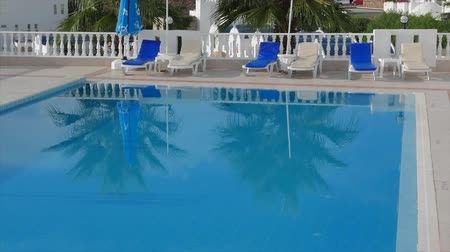 отражать : Deckchairs side of a swimming pool with palm trees reflection in the clear blue water. 4k.