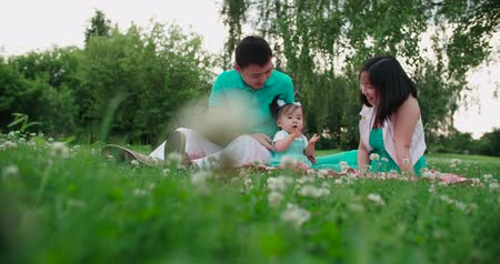 yapıştırma : young Asian family with a year-old baby in a Park during a picnic, have fun, slow motion Stok Video