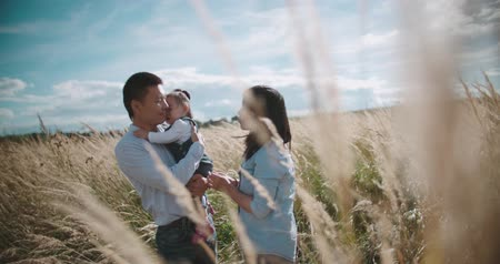 idílico : young Asian family in a field with a baby 1 year on hand, the concept of family happiness, beautiful sunlight, sunset, slow motion