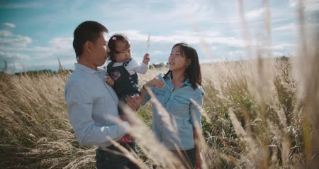 азиатский : young Asian family in a field with a baby 1 year on hand, the concept of marital happiness and motherhood, beautiful sunlight, sunset, slow motion Стоковые видеозаписи