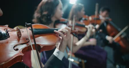 виолончель : symphony orchestra performance, close-up of stringed instruments at work