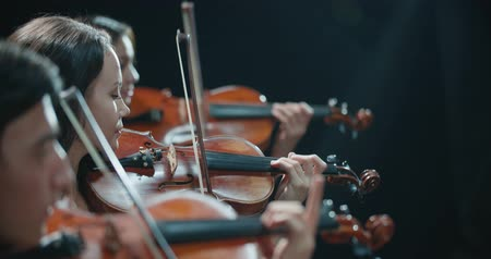 dyrygent : string quartet performs on stage, close-up of violin in work