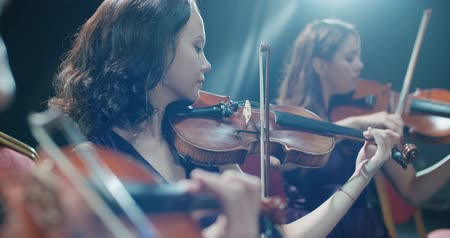 podfuk : symphony orchestra performance, close-up of stringed instruments at work