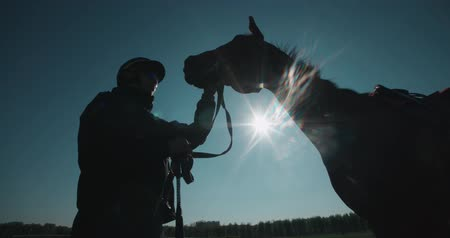 závodní dráha : silhouette of a jockey calms aggressive race horse before a competition
