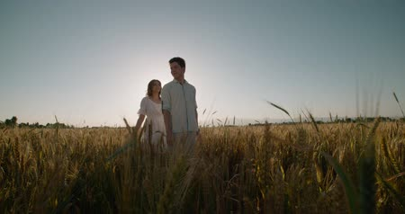 heterosexuální : Young loving carefree couple wheat field outdoors sunset silhouette happy healthy lifestyle recreation leisure enjoying togetherness,slow motion Dostupné videozáznamy