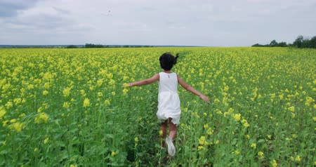 požehnat : little Asian girl 8-9 years old running through the field of yellow flowers, slow motion, back view , Steadicam shot
