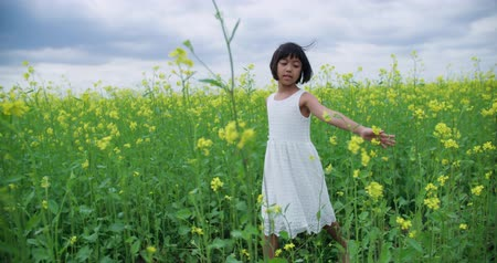 prosperita : little Asian girl 8-9 years of laughs, smiles and runs across the field of yellow flowers, slow motion