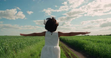 arejado : little girl running on a rural road through green field of wheat, a back view, slow motion, Steadicam shot Vídeos