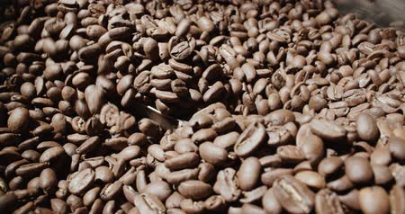 roaster : 4k, slow motion,the freshly roasted coffee beans from a large coffee roaster Stock Footage