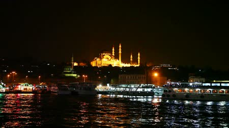 isztambul : Istanbul cityscape with Suleymaniye Mosque at night time