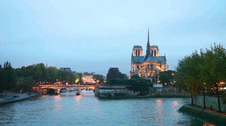 francja : Notre Dame de Paris cathedral at night Wideo