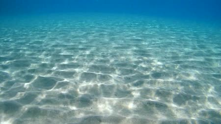 sandy waters : Underwater, the sunlight on the sandy bottom of the sea