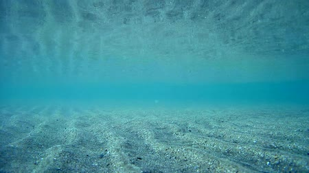 çarpıntı : Excitement in the shallow water, the sand rises from the bottom of the sea