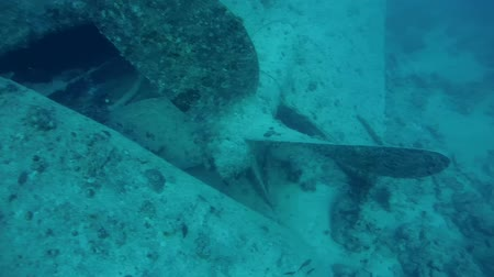 ss : propeller wreck SS Thistlegorm, Red Sea, Sharm el Sheikh, Egypt, Sinai Stock Footage