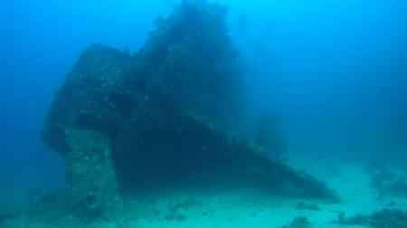 ss : Feed sunken wrecked ship SS Carnatic, Red Sea, Egypt