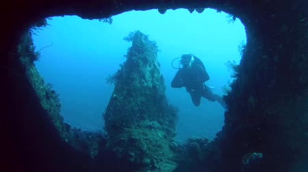 ss : Diver inspects the screw the wrecked ship SS Carnatic, Red Sea, Egypt Stock Footage