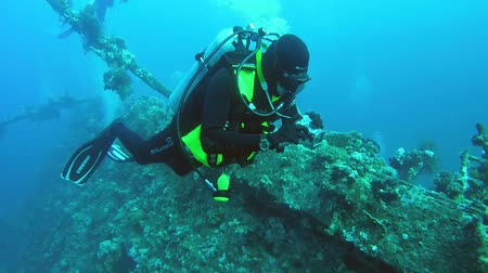ss : Diver with photocamera floats over the feed sunken wrecked ship SS Carnatic, Red Sea, Egypt