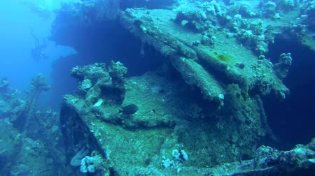 ss : the wreckage of the wreck ship SS Carnatic, Red Sea, Egypt