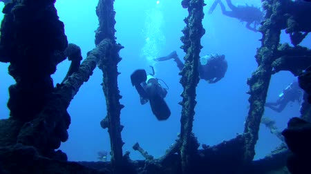 ss : A diver swims inside wrecked ship SS Carnatic, Red Sea, Egypt
