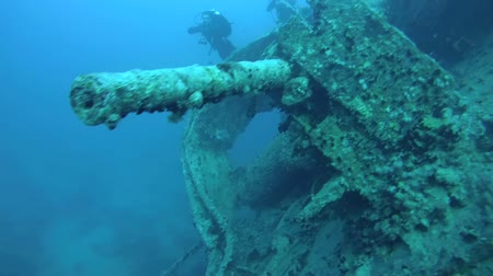 ss : Anti-aircraft gun on the wreck SS Thistlegorm, Red Sea, Sharm el Sheikh, Egypt, Sinai