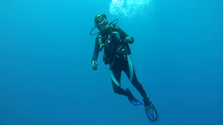 potápěč : Woman diver hangs in the water and looking up at the approaching her partner, they communicate with gestures, Indian Ocean, Maldives Dostupné videozáznamy